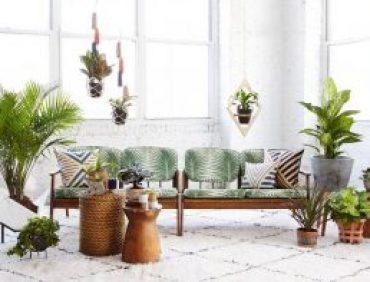 ایده های چیدمان خلاقانه گیاهان آپارتمانی در منزل