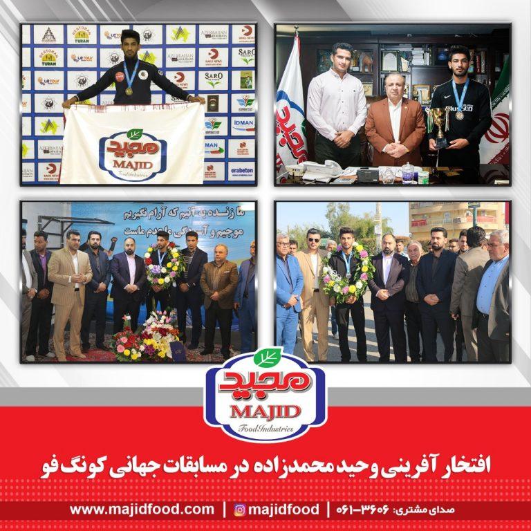 افتخار آفرینی وحید محمدزاده در در مسابقات جهانی کونگ فو
