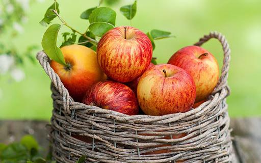 آشنایی با سیب